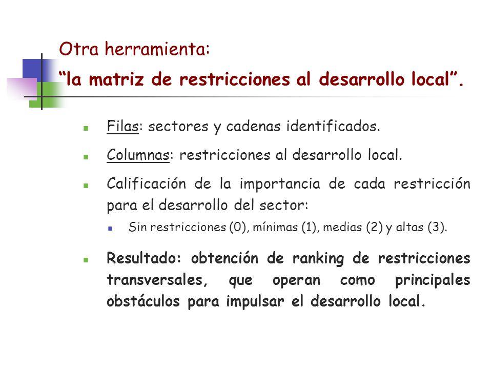 Otra herramienta: la matriz de restricciones al desarrollo local. Filas: sectores y cadenas identificados. Columnas: restricciones al desarrollo local