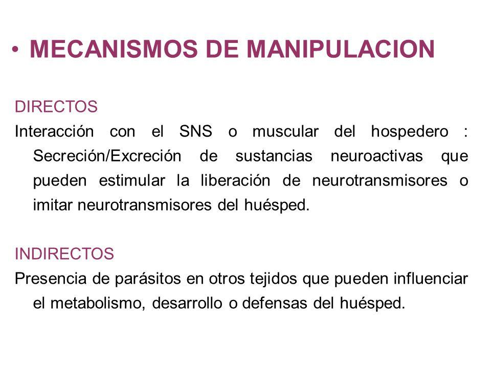 MECANISMOS DE MANIPULACION DIRECTOS Interacción con el SNS o muscular del hospedero : Secreción/Excreción de sustancias neuroactivas que pueden estimular la liberación de neurotransmisores o imitar neurotransmisores del huésped.