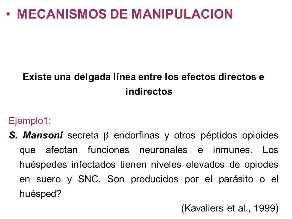 MECANISMOS DE MANIPULACION Existe una delgada línea entre los efectos directos e indirectos Ejemplo1: S. Mansoni secreta endorfinas y otros péptidos o