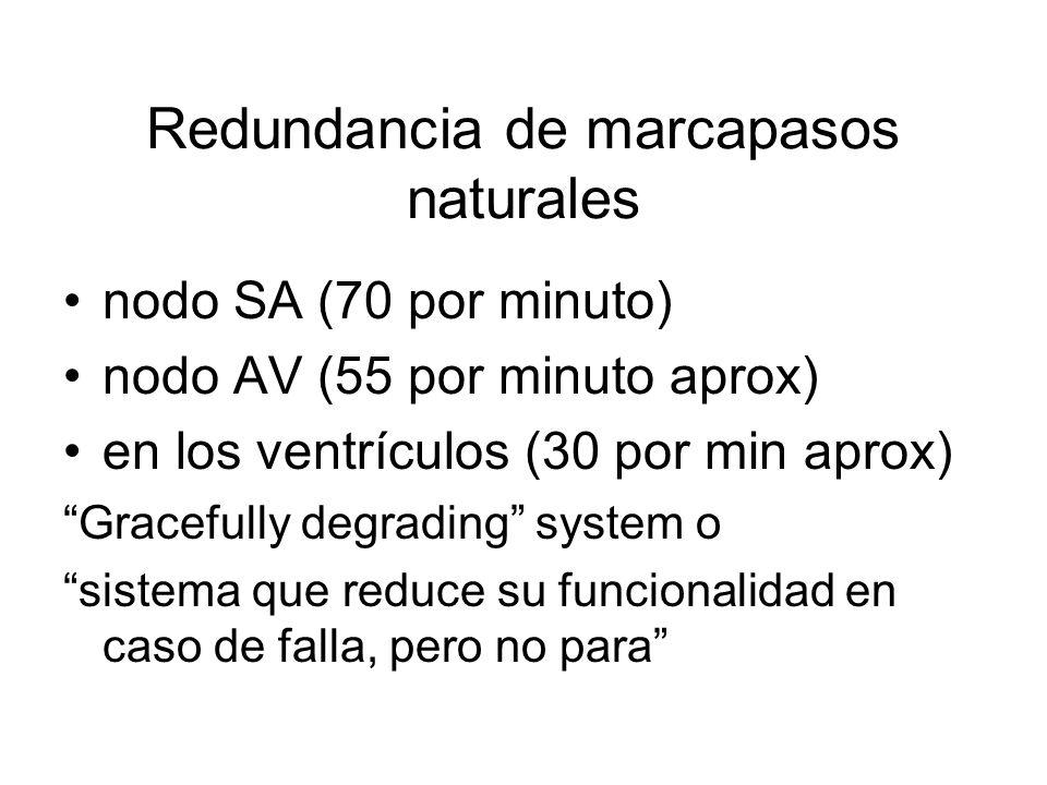 Redundancia de marcapasos naturales nodo SA (70 por minuto) nodo AV (55 por minuto aprox) en los ventrículos (30 por min aprox) Gracefully degrading system o sistema que reduce su funcionalidad en caso de falla, pero no para