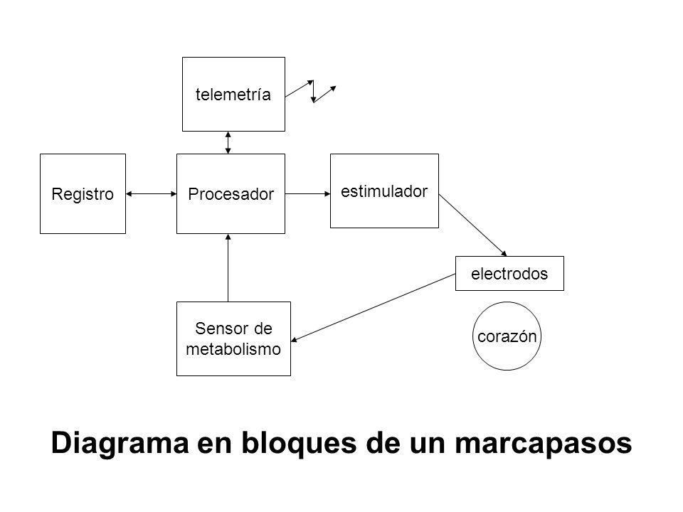 Sensor de metabolismo estimulador Procesador telemetría Registro corazón electrodos Diagrama en bloques de un marcapasos