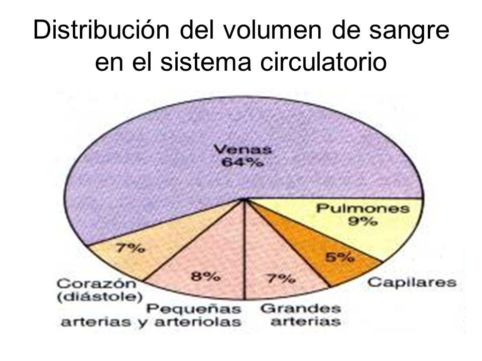 Distribución del volumen de sangre en el sistema circulatorio