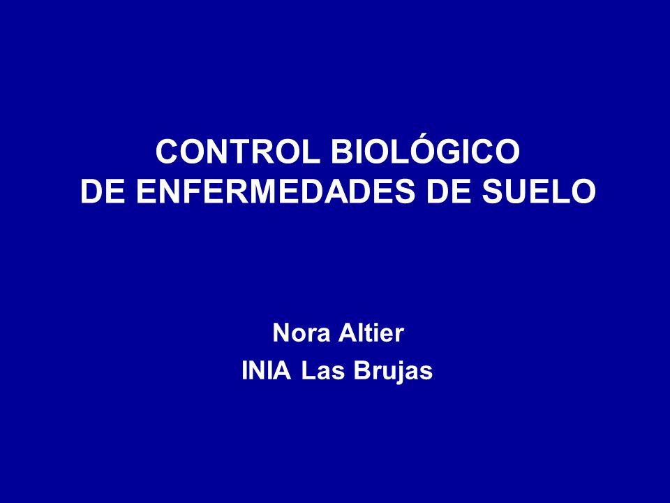 CONTROL BIOLÓGICO DE ENFERMEDADES DE SUELO Nora Altier INIA Las Brujas
