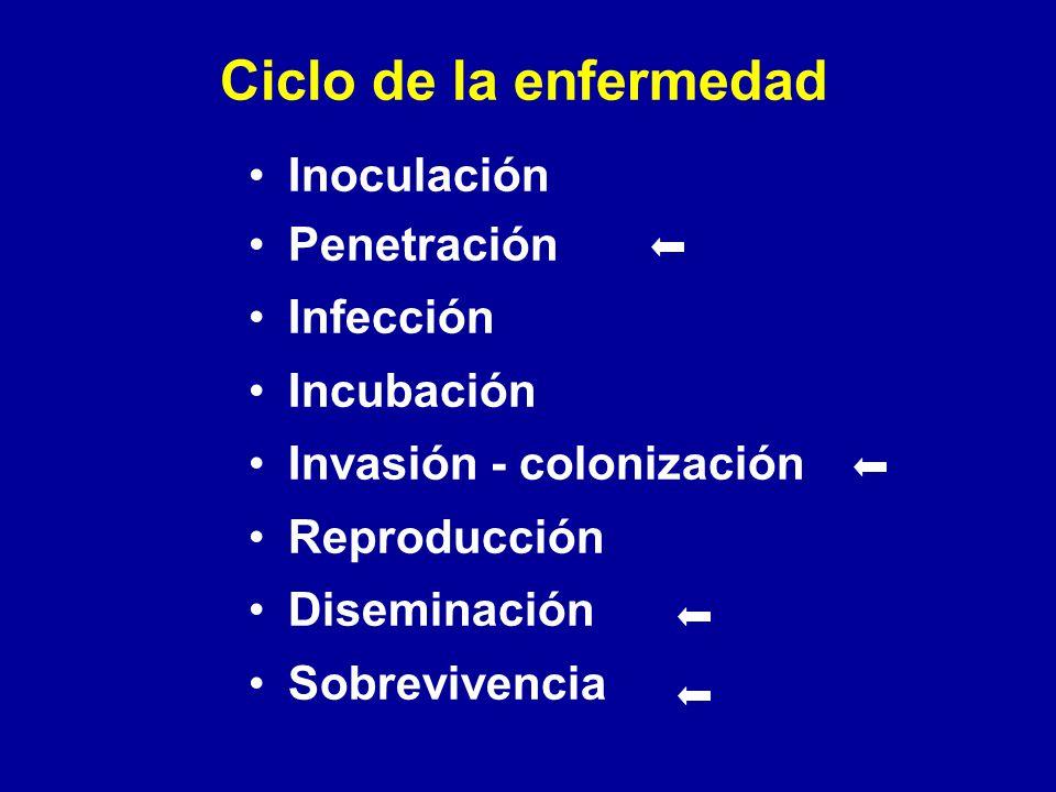 Ciclo de la enfermedad Inoculación Penetración Infección Incubación Invasión - colonización Reproducción Diseminación Sobrevivencia