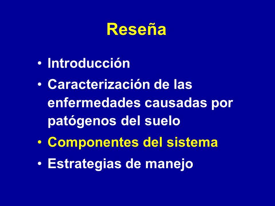 Reseña Introducción Caracterización de las enfermedades causadas por patógenos del suelo Componentes del sistema Estrategias de manejo
