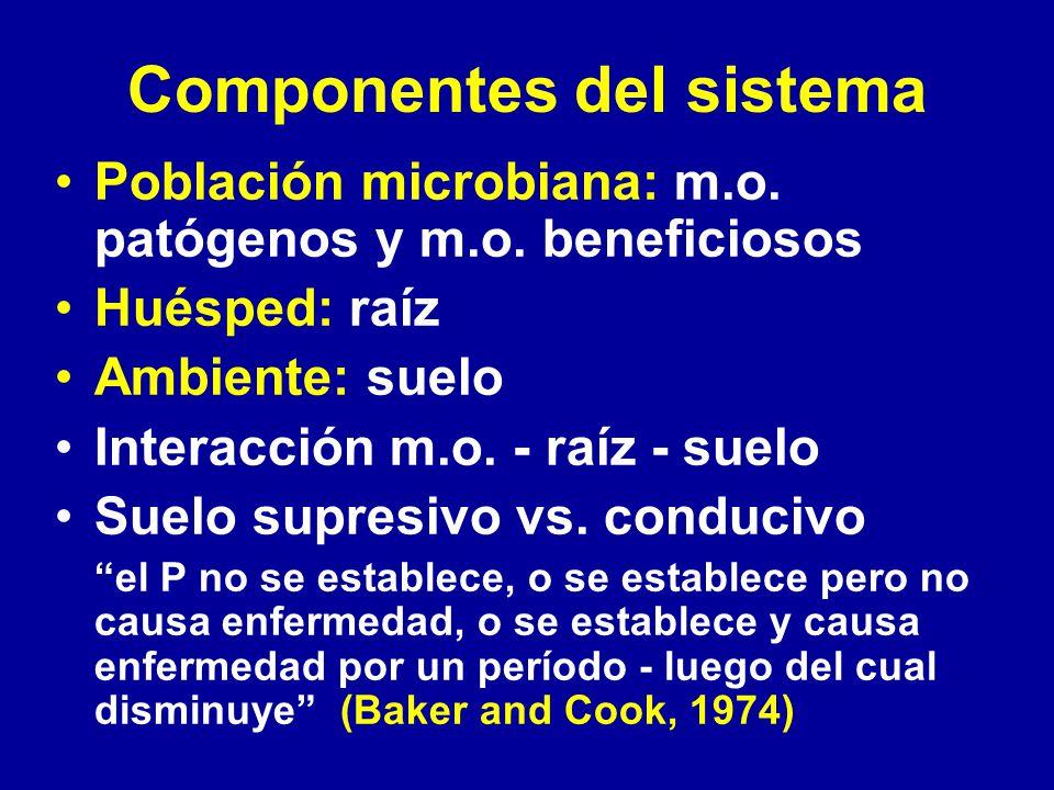 Componentes del sistema Población microbiana: m.o. patógenos y m.o. beneficiosos Huésped: raíz Ambiente: suelo Interacción m.o. - raíz - suelo Suelo s