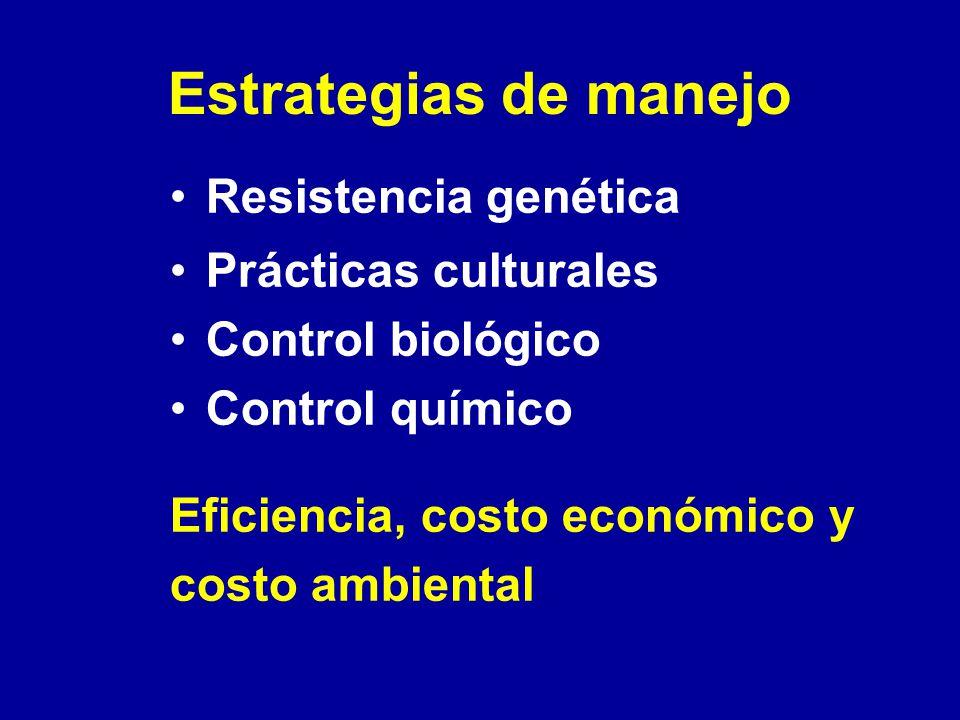 Estrategias de manejo Resistencia genética Prácticas culturales Control biológico Control químico Eficiencia, costo económico y costo ambiental