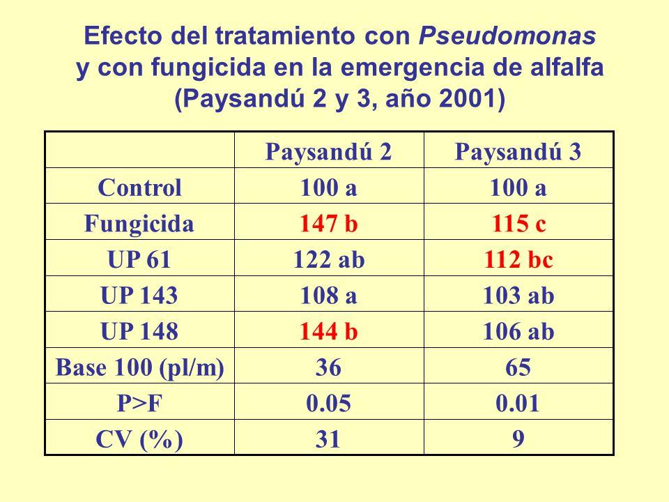 931CV (%) 0.010.05P>F 6536Base 100 (pl/m) 106 ab144 bUP 148 103 ab108 aUP 143 112 bc122 abUP 61 115 c147 bFungicida 100 a Control Paysandú 3Paysandú 2