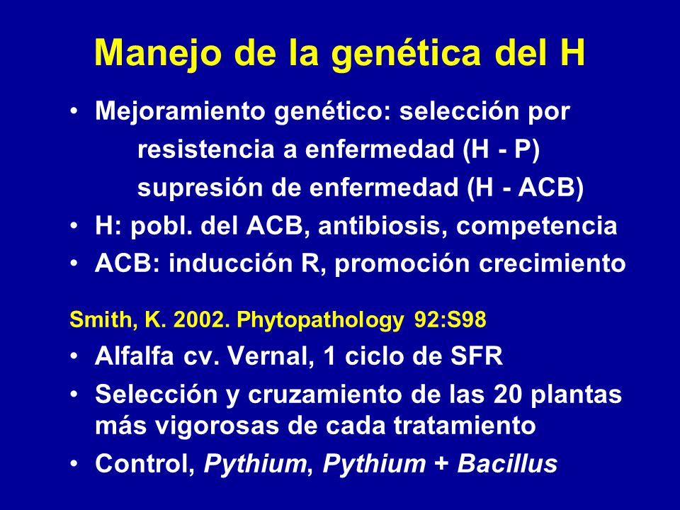 Manejo de la genética del H Mejoramiento genético: selección por resistencia a enfermedad (H - P) supresión de enfermedad (H - ACB) H: pobl. del ACB,