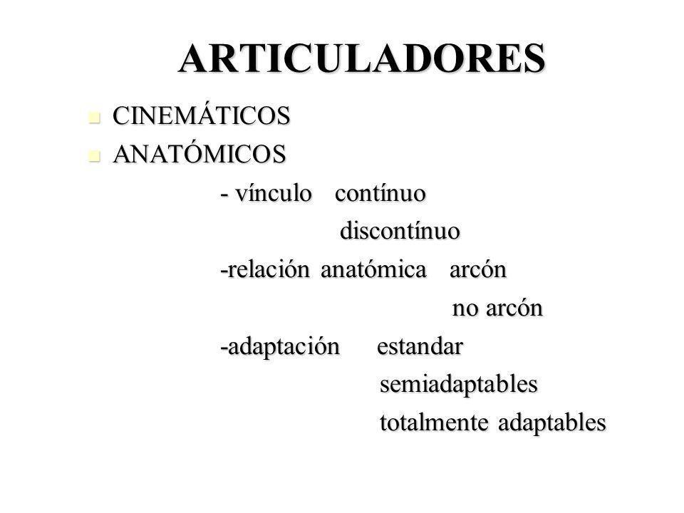 ARTICULADORES CINEMÁTICOS CINEMÁTICOS ANATÓMICOS ANATÓMICOS - vínculo contínuo - vínculo contínuo discontínuo discontínuo -relación anatómica arcón -r