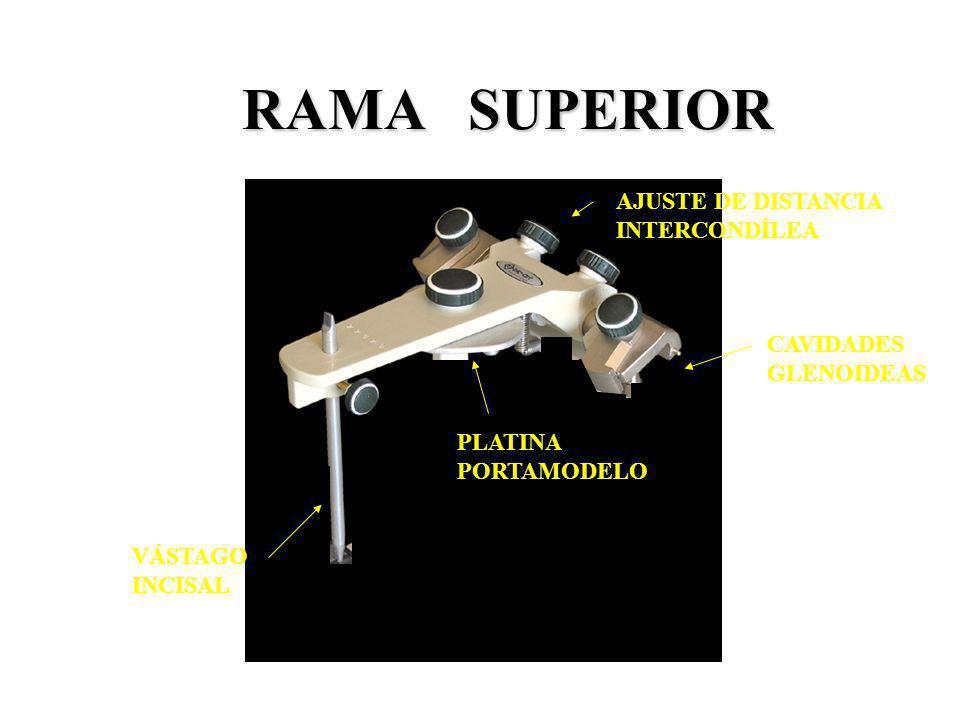RAMA SUPERIOR CAVIDADES GLENOIDEAS VÁSTAGO INCISAL PLATINA PORTAMODELO AJUSTE DE DISTANCIA INTERCONDÍLEA