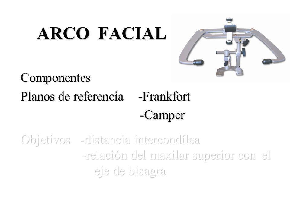 ARCO FACIAL Componentes Componentes Planos de referencia -Frankfort Planos de referencia -Frankfort -Camper -Camper Objetivos -distancia intercondílea