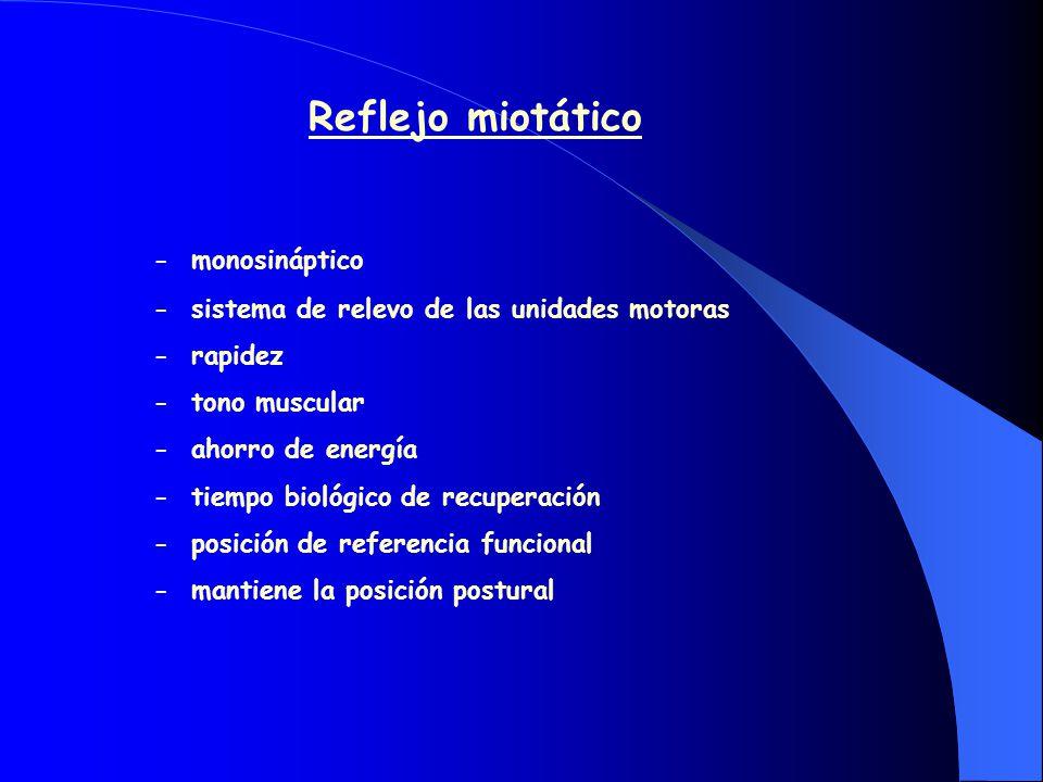 CARACTERÍSTICAS DE LA POSICIÓN DE OCLUSIÓN MÁXIMA -Arco reflejo - adquirido - dinámico - modificable -Depende de la oclusión dentaria -Etapas evolutivas:.