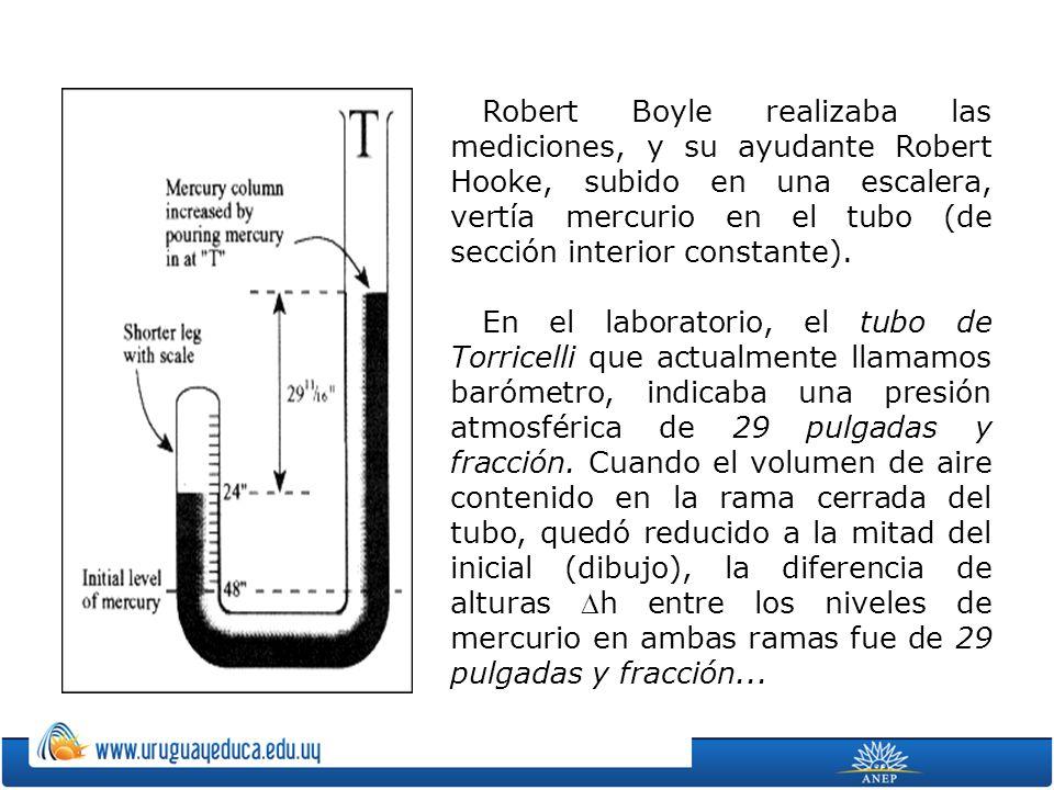 Robert Boyle realizaba las mediciones, y su ayudante Robert Hooke, subido en una escalera, vertía mercurio en el tubo (de sección interior constante).