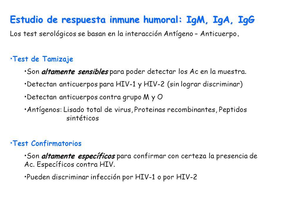 Estudio de respuesta inmune humoral: IgM, IgA, IgG Los test serológicos se basan en la interacción Antígeno – Anticuerpo. Test de Tamizaje altamente s
