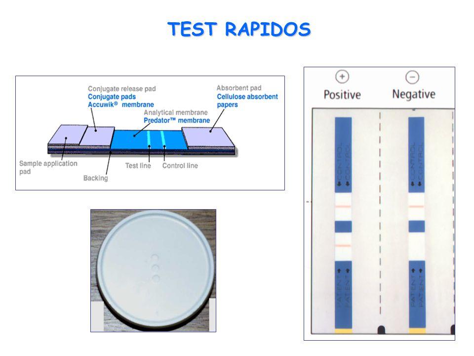 TEST RAPIDOS