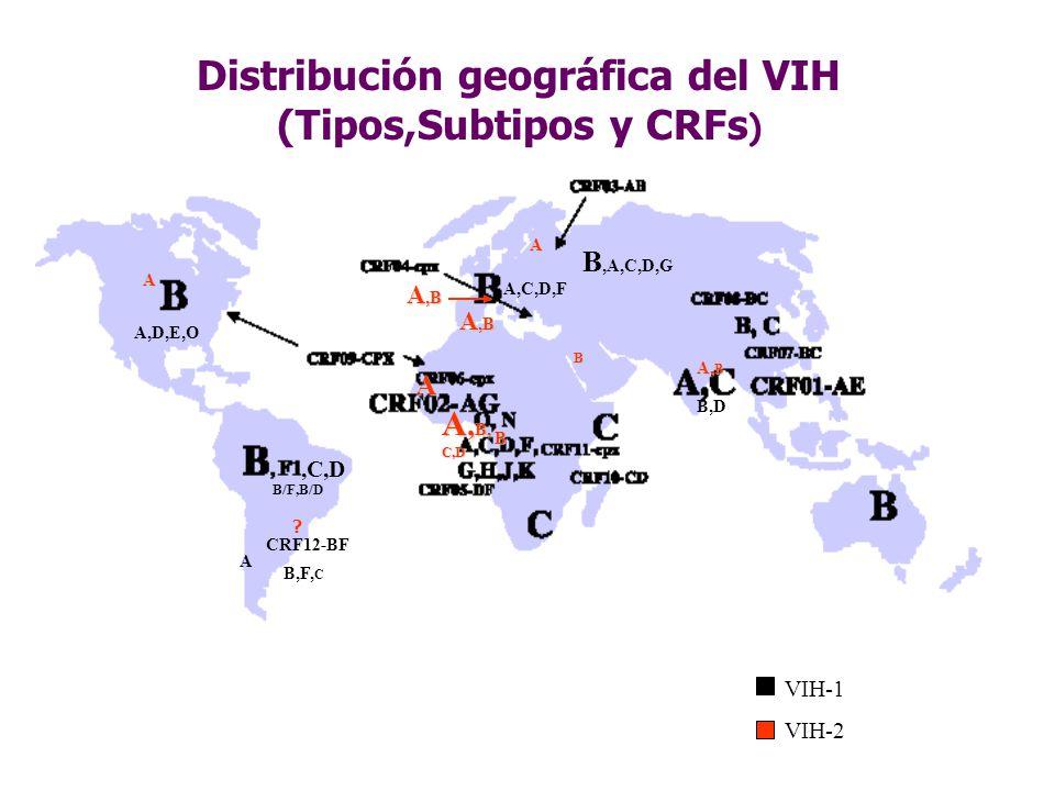 Distribución geográfica del VIH (Tipos,Subtipos y CRFs ) CRF12-BF,C,D B/F,B/D A,C,D,F B,D B,A,C,D,G A,D,E,O A B,F, C A A,B B A B A, B, C,D A,B A VIH-1