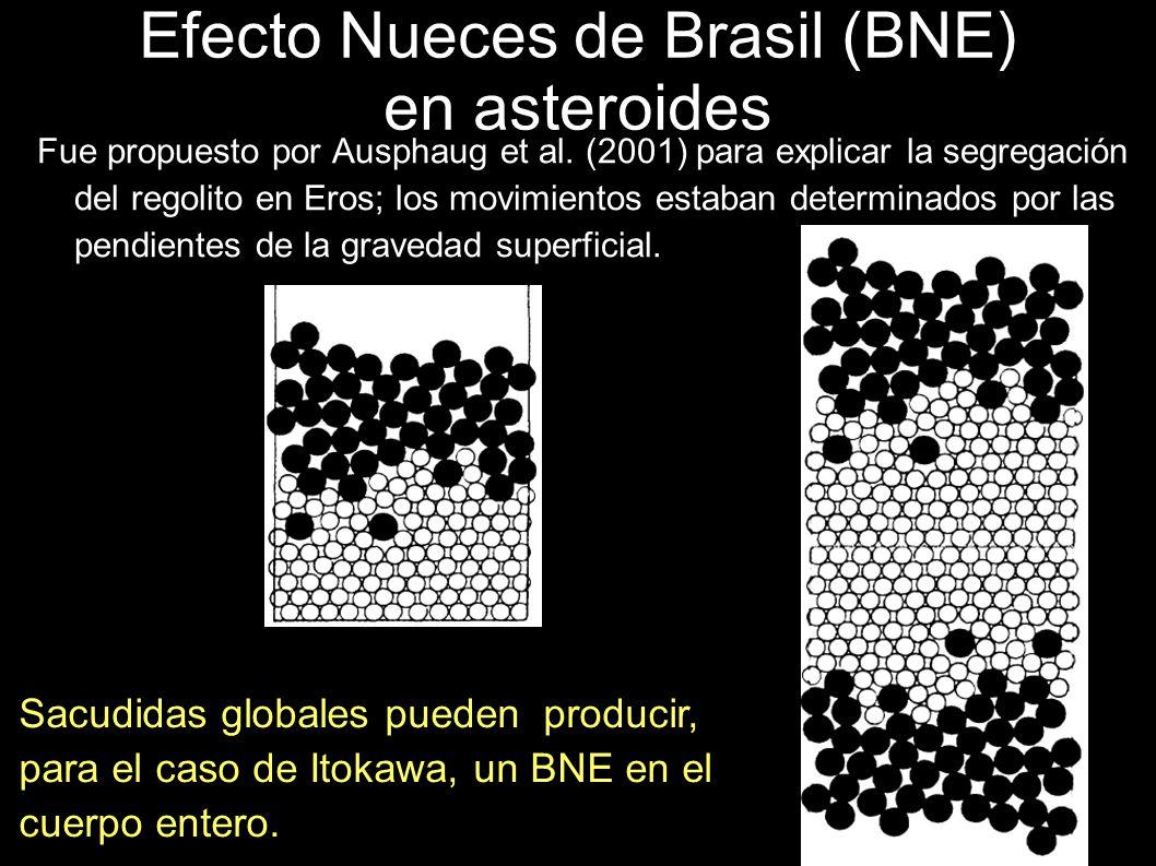 Efecto Nueces de Brasil (BNE) en asteroides Fue propuesto por Ausphaug et al. (2001) para explicar la segregación del regolito en Eros; los movimiento