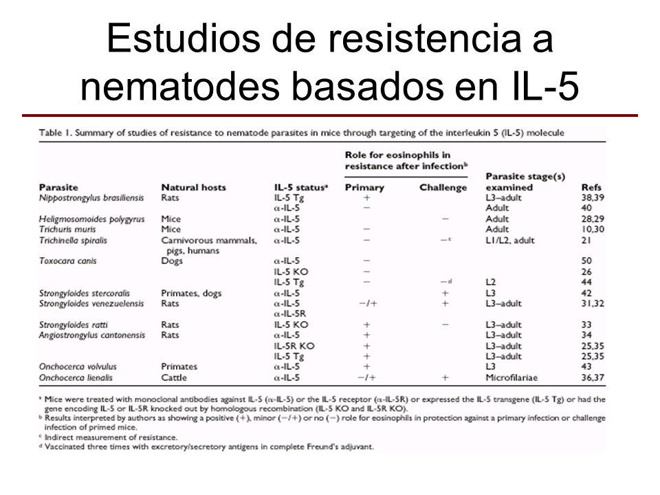 Estudios de resistencia a nematodes basados en IL-5