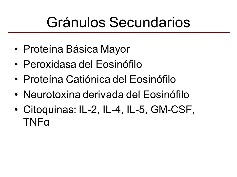 Gránulos Secundarios Proteína Básica Mayor Peroxidasa del Eosinófilo Proteína Catiónica del Eosinófilo Neurotoxina derivada del Eosinófilo Citoquinas: