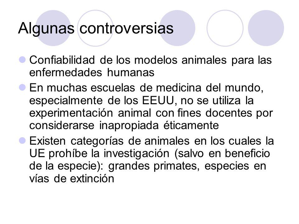 Algunas controversias Confiabilidad de los modelos animales para las enfermedades humanas En muchas escuelas de medicina del mundo, especialmente de l
