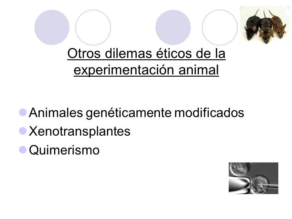 Otros dilemas éticos de la experimentación animal Animales genéticamente modificados Xenotransplantes Quimerismo