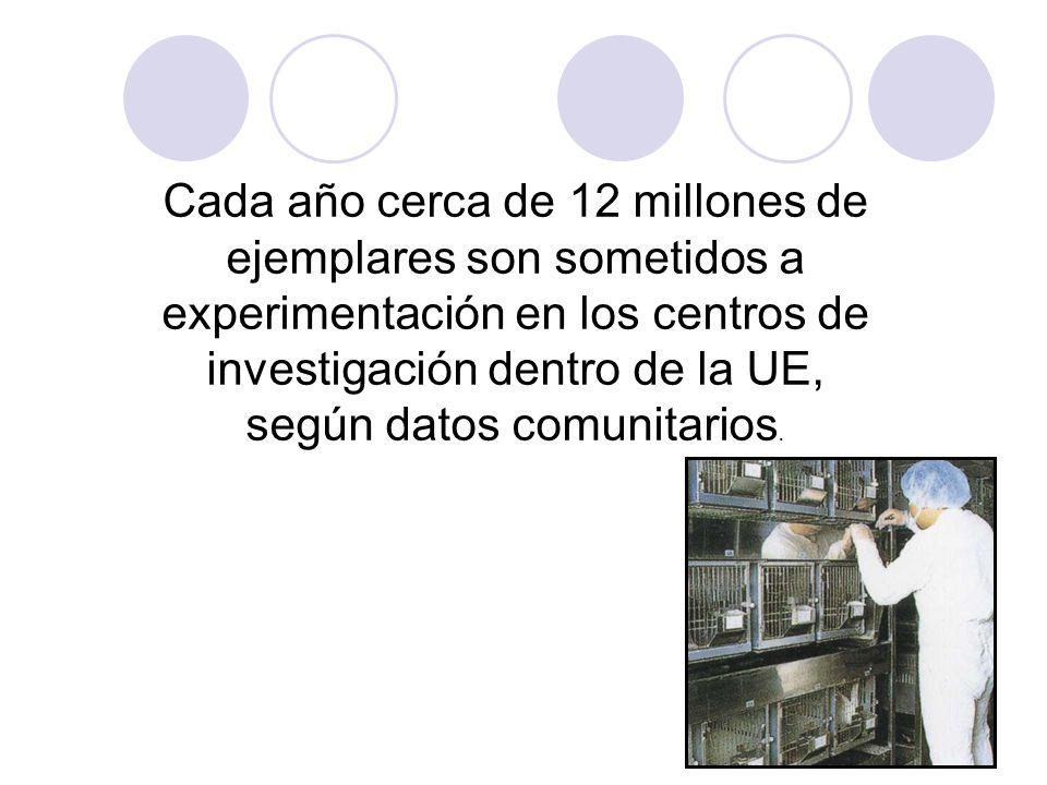 Cada año cerca de 12 millones de ejemplares son sometidos a experimentación en los centros de investigación dentro de la UE, según datos comunitarios.