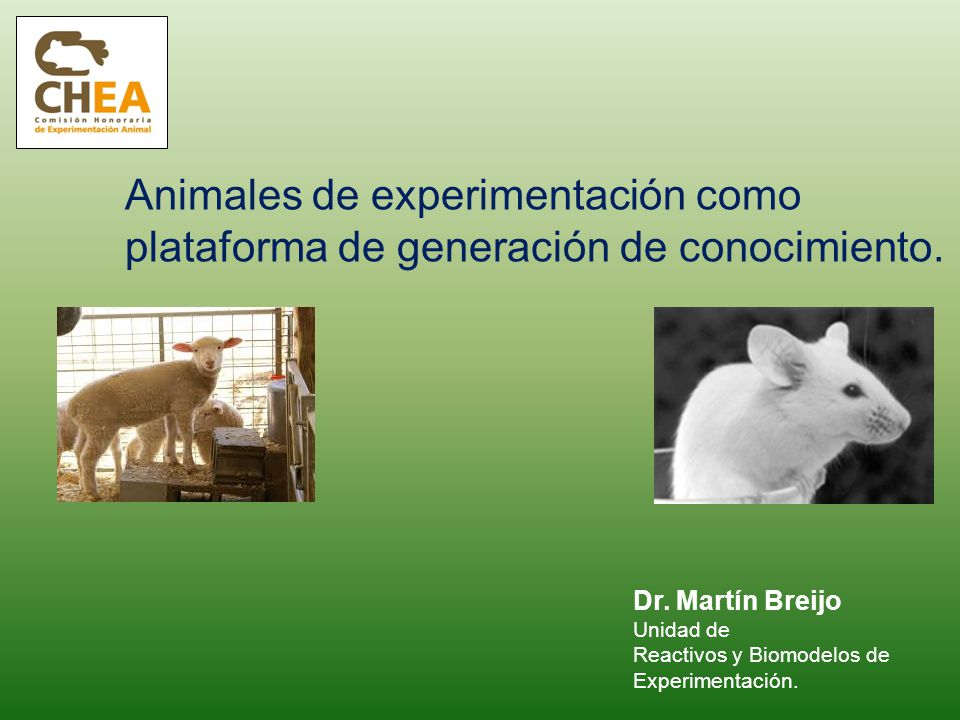 Animales de experimentación como plataforma de generación de conocimiento. Dr. Martín Breijo Unidad de Reactivos y Biomodelos de Experimentación.
