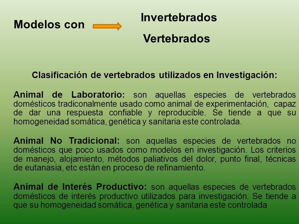 Clasificación de vertebrados utilizados en Investigación: Animal de Laboratorio : son aquellas especies de vertebrados domésticos tradiconalmente usad