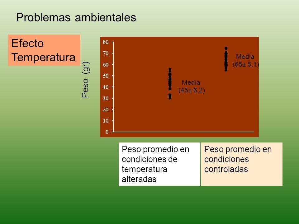 Peso (gr) Peso promedio en condiciones controladas Media (65± 5,1) Peso promedio en condiciones de temperatura alteradas Media (45± 6,2) Problemas amb