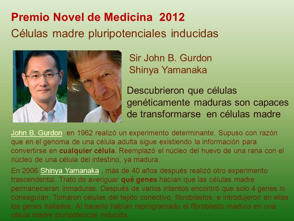 Premio Novel de Medicina 2012 Células madre pluripotenciales inducidas Sir John B. Gurdon Shinya Yamanaka John B. GurdonJohn B. Gurdon en 1962 realizó
