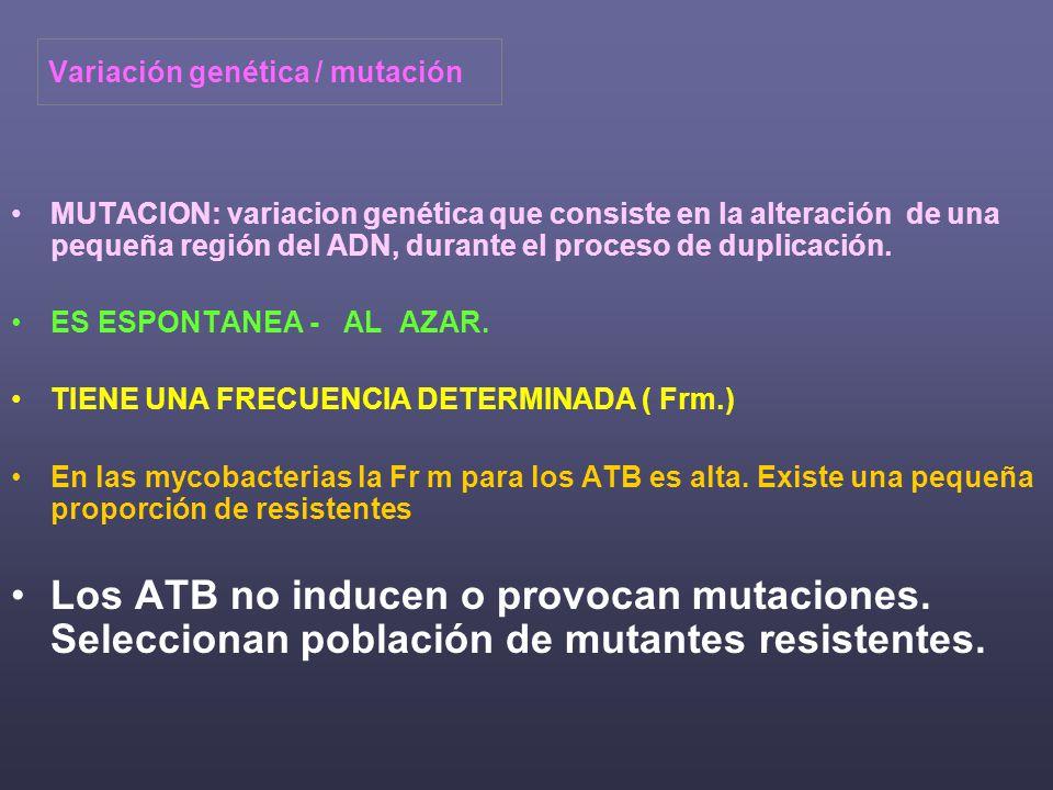 Variación genética / mutación MUTACION: variacion genética que consiste en la alteración de una pequeña región del ADN, durante el proceso de duplicación.