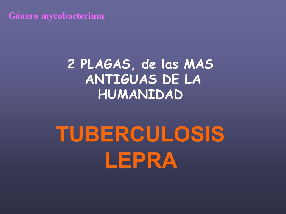 Las micobacterias GENERO MYCOBACTERIUM.