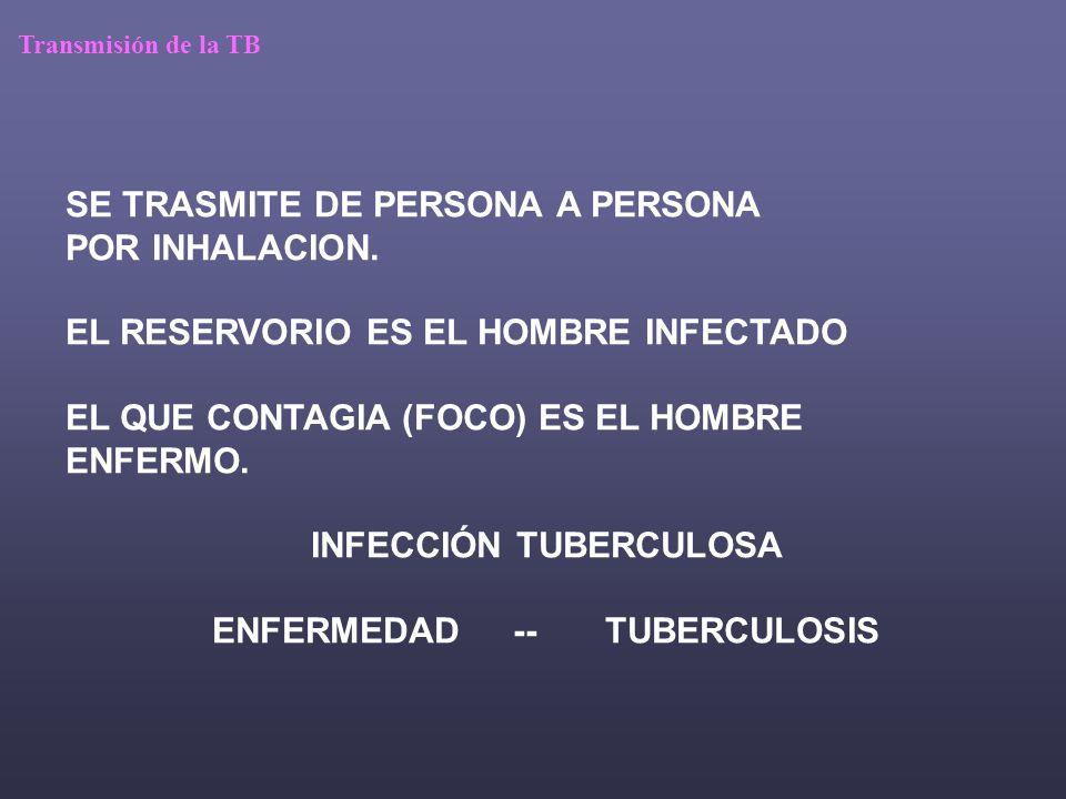 Historia natural de la TB SUJETO ENFERMO TB pulmonar….