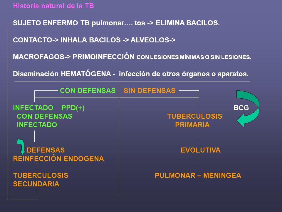Factores de Riesgo: POBREZA – CONTACTO – HIV - CARCEL Edad Factores genéticos Silicosis Diabetes Enf.