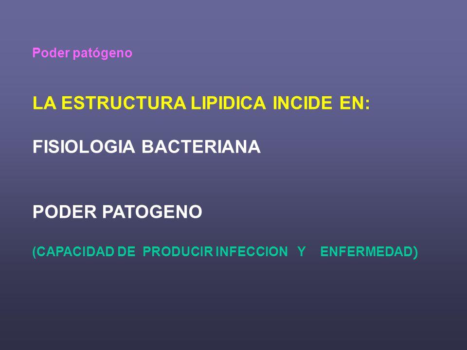Poder patógeno LA ESTRUCTURA LIPIDICA INCIDE EN: FISIOLOGIA BACTERIANA PODER PATOGENO (CAPACIDAD DE PRODUCIR INFECCION Y ENFERMEDAD )