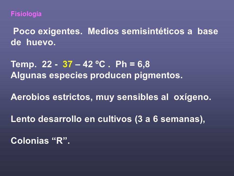 Fisiología Poco exigentes.Medios semisintéticos a base de huevo.