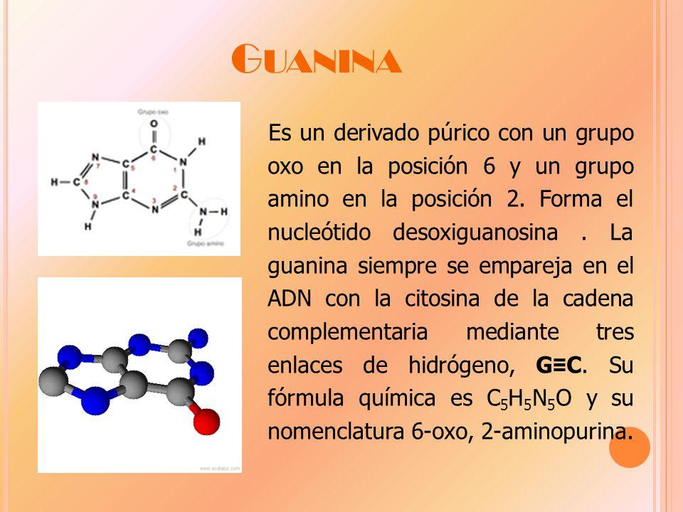 G UANINA Es un derivado púrico con un grupo oxo en la posición 6 y un grupo amino en la posición 2.