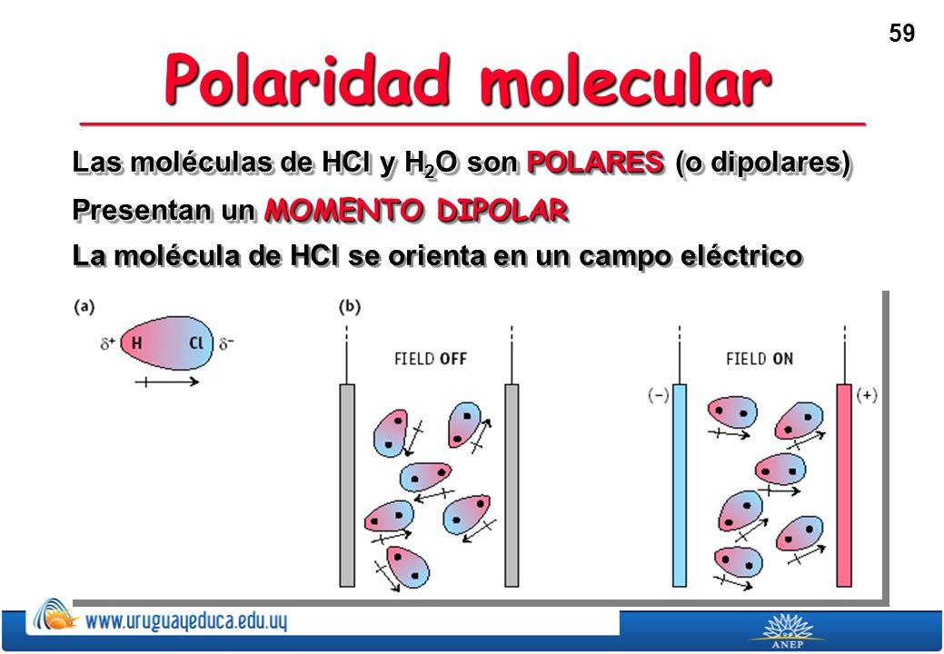 59 Polaridad molecular Las moléculas de HCl y H 2 O son POLARES (o dipolares) Presentan un MOMENTO DIPOLAR La molécula de HCl se orienta en un campo eléctrico Las moléculas de HCl y H 2 O son POLARES (o dipolares) Presentan un MOMENTO DIPOLAR La molécula de HCl se orienta en un campo eléctrico