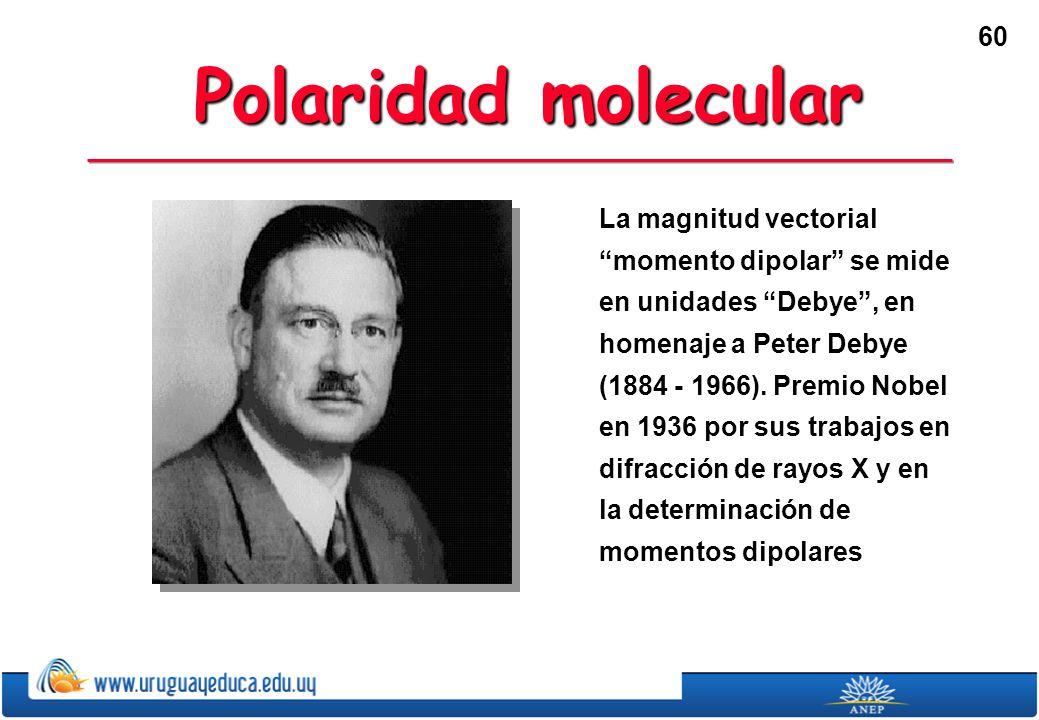 60 Polaridad molecular La magnitud vectorial momento dipolar se mide en unidades Debye, en homenaje a Peter Debye (1884 - 1966).