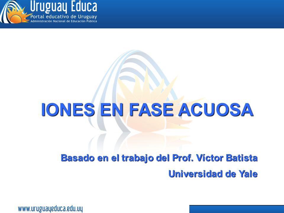 1 IONES EN FASE ACUOSA Basado en el trabajo del Prof. Víctor Batista Universidad de Yale