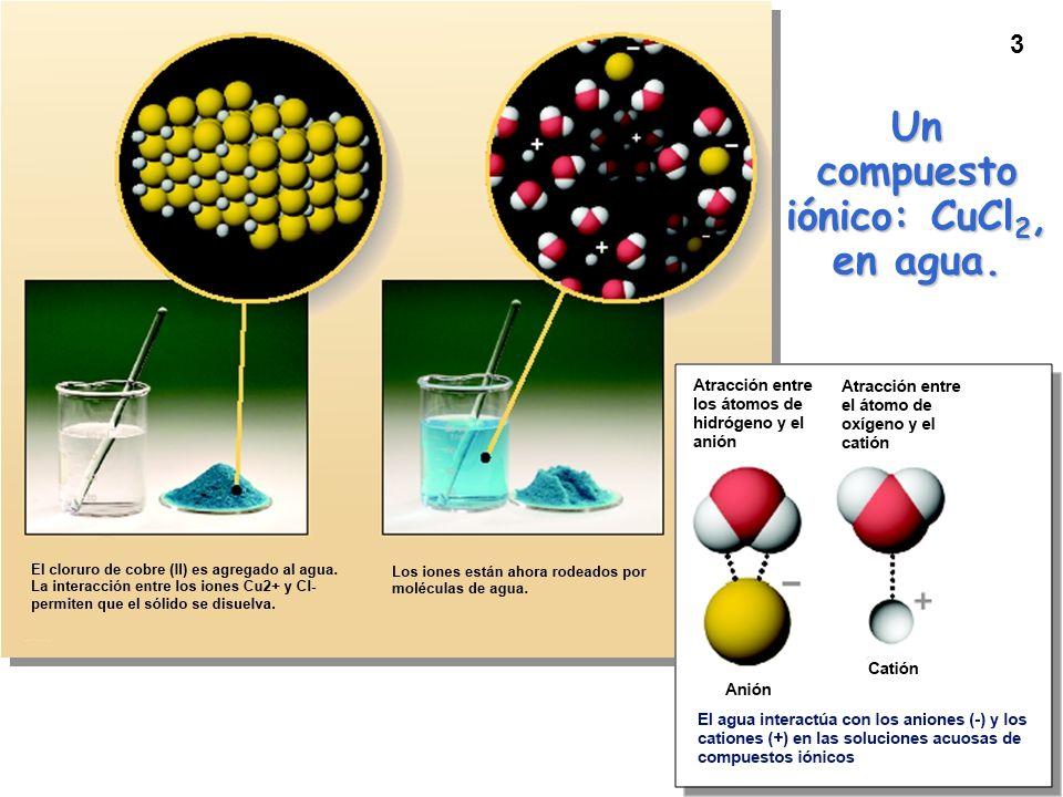 3 Un compuesto iónico: CuCl 2, en agua.