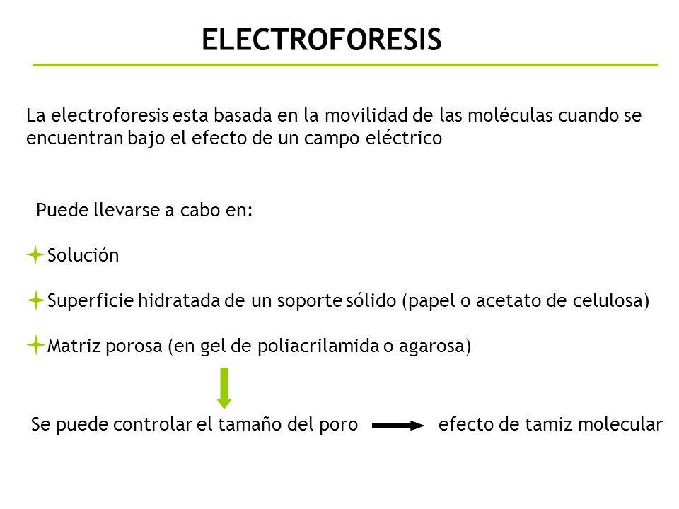 ELECTROFORESIS La electroforesis esta basada en la movilidad de las moléculas cuando se encuentran bajo el efecto de un campo eléctrico Se puede contr