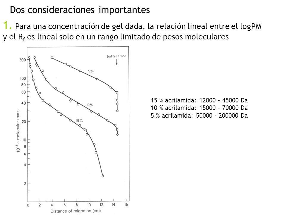 Dos consideraciones importantes 1. Para una concentración de gel dada, la relación lineal entre el logPM y el R f es lineal solo en un rango limitado