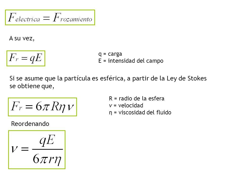 A su vez, q = carga E = intensidad del campo Si se asume que la partícula es esférica, a partir de la Ley de Stokes se obtiene que, R = radio de la esfera v = velocidad η = viscosidad del fluido Reordenando