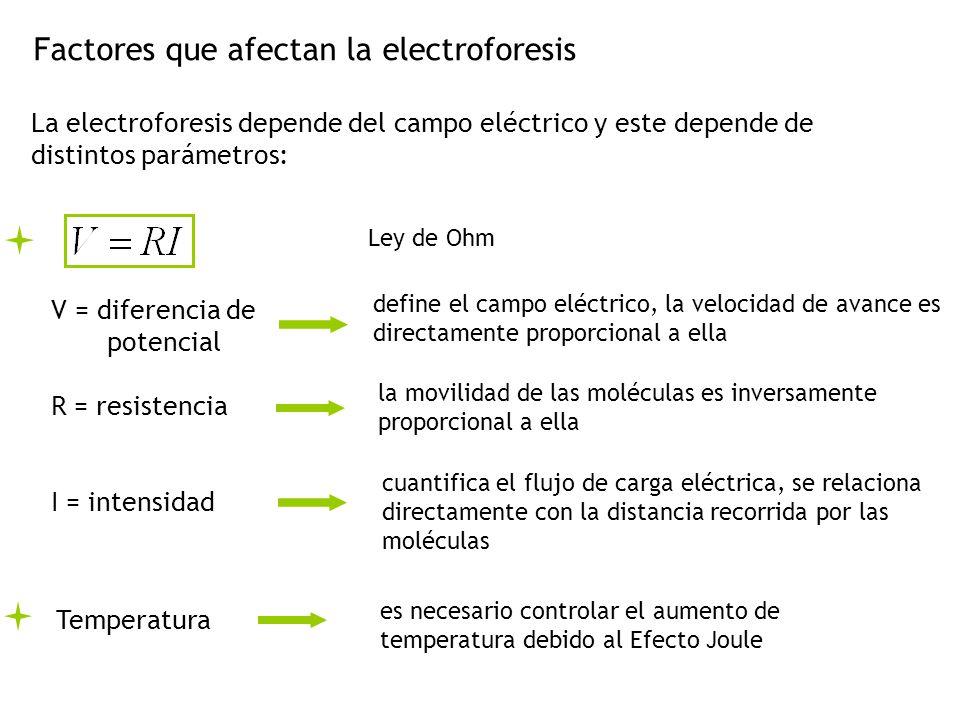 Factores que afectan la electroforesis La electroforesis depende del campo eléctrico y este depende de distintos parámetros: Ley de Ohm V = diferencia de potencial R = resistencia I = intensidad define el campo eléctrico, la velocidad de avance es directamente proporcional a ella la movilidad de las moléculas es inversamente proporcional a ella cuantifica el flujo de carga eléctrica, se relaciona directamente con la distancia recorrida por las moléculas Temperatura es necesario controlar el aumento de temperatura debido al Efecto Joule