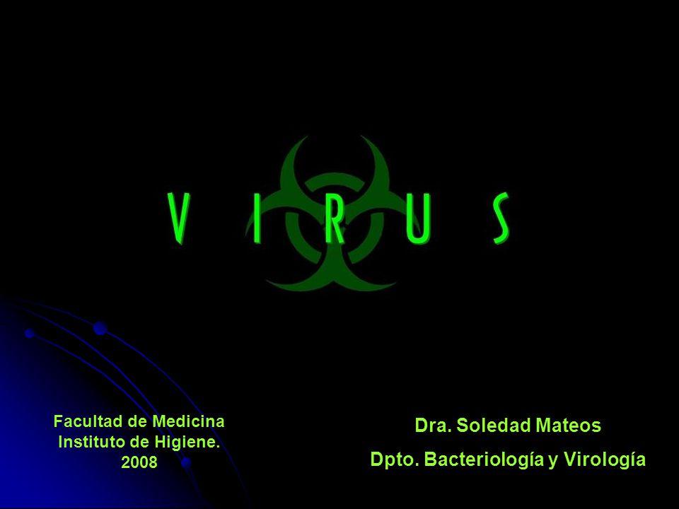 Dra. Soledad Mateos Dpto. Bacteriología y Virología Facultad de Medicina Instituto de Higiene. 2008