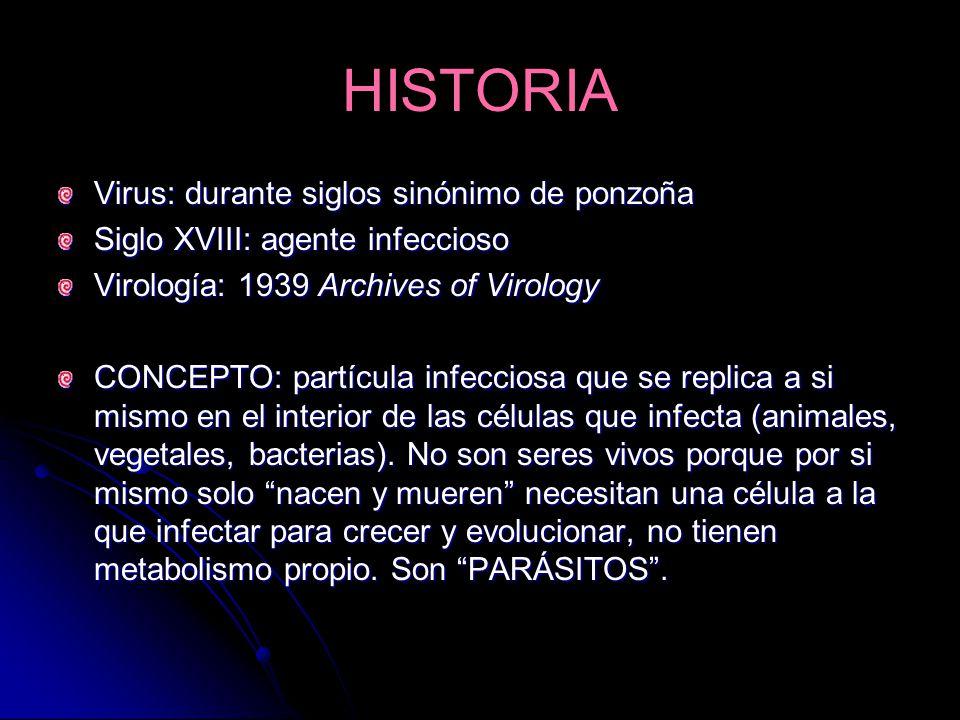 HISTORIA Virus: durante siglos sinónimo de ponzoña Siglo XVIII: agente infeccioso Virología: 1939 Archives of Virology CONCEPTO: partícula infecciosa