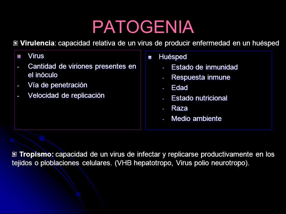 Virulencia: capacidad relativa de un virus de producir enfermedad en un huésped PATOGENIA Virus - Cantidad de viriones presentes en el inóculo - Vía d