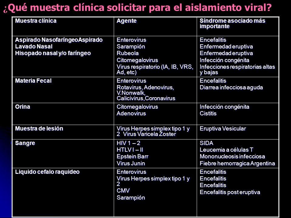 Muestra clínica Agente Síndrome asociado más importante Aspirado NasofaríngeoAspirado Lavado Nasal Hisopado nasal y/o faríngeo EnterovirusSarampiónRub